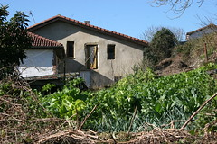 04-02-16 016 (Jusotil_1943) Tags: verduras ruinas huerta 040216 caseria