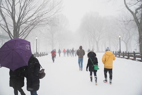 Snowpocalypse 2016