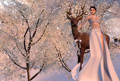 La Paix - Bliss B - Le Poppycock_001 (mondi.beaumont) Tags: winter white snow girl fashion animals la women dress dove avatar avi deer sl le secondlife falcon gown animations luxury poses props paid poppycock gacha frisland kellini