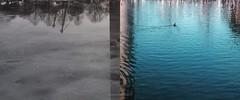 seasons (Yousuf Ali Nalakath) Tags: snow art landscape spring seasons yousufolio