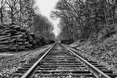 (Silverio Photography) Tags: blackandwhite nature train photoshop canon tracks newengland sigma elements suburb 1770 hdr topaz adjust medfield massachuetts 60d