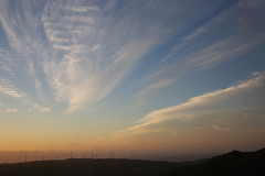 View from Johnston's Hill (whitebear100) Tags: newzealand nz wellington northisland johnstonshill