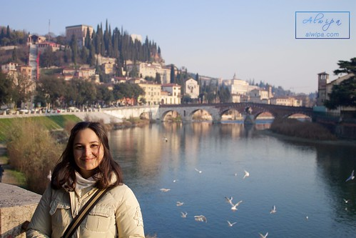 """Verona (Italy) • <a style=""""font-size:0.8em;"""" href=""""http://www.flickr.com/photos/104879414@N07/24502730661/"""" target=""""_blank"""">View on Flickr</a>"""