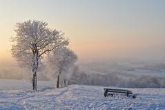 Winterimpression (Uli He - Fotofee) Tags: schnee winter nikon kalt eis bume uli baum ulrike januar klte meinweg 2016 gefroren hergert eiszeit 16c burghaun pltzer nikond90 eisundschnee fotofee ulrikehe ulrikehergert ulihe