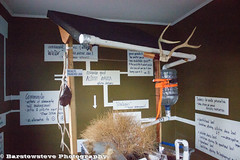 Amboy Art (Barstow Steve) Tags: california road trip mojave 50 preserve amboy