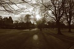 Shadows in the Park,Victoria Park,Aberdeen_feb 16_69 (Alan Longmuir.) Tags: shadow monochrome victoriapark aberdeen grampian watsonstreet shadowsinthepark