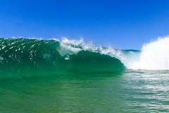NBSurf_DY_2016_01_31_914.jpg (Neil Banek) Tags: surf sydney freshwater deewhy northernbeaches