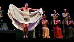 Sara Baras - Expo 2008 Zaragoza (Vicente A. Roa) Tags: nightphotography lumix dance concert expo stage concierto jazz dancer panasonic zaragoza handheld baile flamenco roa expo2008 expozaragoza2008 sarabaras dmctz3 panasonicdmctz3 apulso vicenteroa vicentearoagaspar