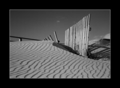FENCE IN THE BEACH (jonathan manasco) Tags: wood texture beach lines contrast canon fence landscape coast spain sand shadows andalucia desaturation cadiz tarifa monocrome