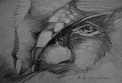 drawing (alice 240) Tags: portrait bw art monochrome museum modern illustration pencil monocromo blackwhite flickr poetry artist artistic drawing modernart traditionalart creative dream surreal exhibition fantasy disegno schizzo gellery alice240