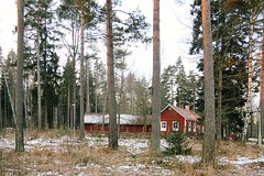 lost. (Paula Trebatick) Tags: winter red house snow tree nature museum architecture canon forrest sweden away redhouse abroad linkoping 2016