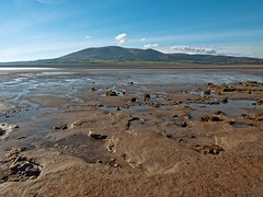 The River Nith Estuary taken from just south of Glencaple (penlea1954) Tags: mouth river scotland hill estuary criffel dumfries galloway nith glencaple