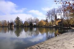 Llac de Puigcerd (ilabairutrenchs) Tags: sun lake sol lago reflex autum otoo catalunya catalua llac tardor puigcerd fulles