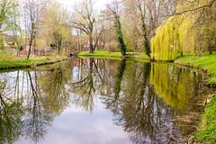 Get up, get out: Spring is everywhere! (OR_U) Tags: bridge trees reflection green water germany spring pond village willow oru elvispresley 2016 harbke stammtischblende50 harbkerschloss