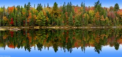 Fall colors (Nitish_Bhardwaj) Tags: blue autumn red sky orange lake ontario canada color colour reflection tree green fall nature water landscape colorful colourful
