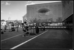 musee_dentelle_calais09 (Les photos de Laurent) Tags: street france building museum architecture calle arquitectura nikon lace walk edificio north muse promenade caminar museo 1855mm rue dentelle calais laurent nord norte batiment pasdecalais encaje d3200 gaudinfazio