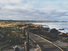 Find your path (Daniel Mark) Tags: path pebblebeach softtones vsco iphoneonly iphone6s
