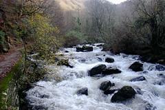 Watersmeet (oetrope) Tags: winter river devon nationaltrust lyn watersmeet exmoor