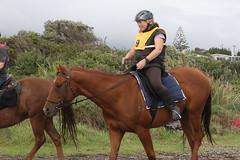 IMG_EOS 7D Mark II201604039709 (David F-I) Tags: horse equestrian horseback horseriding trailriding trailride ctr tehapua watrc wellingtonareatrailridingclub competitivetrailriding sporthorse equestriansport competitivetrailride april2016 tehapua2016 tehapuaapril2016 watrctehapuaapril2016