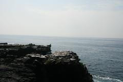 IMG_7642 (chupalo) Tags: ocean cliffs lavarocks islasplaza