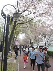 C16-Seoul-Parc Seokcho(4) (jbeaulieu) Tags: seoul coree parc seokcho