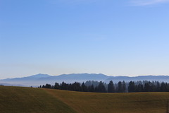 Layers of nature (Jan Zoric) Tags: sky mist forest horizon hill clearsky