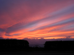 Through the gate (rospix+) Tags: uk pink blue sunset sky nature wales clouds countryside hedge april 2016 rospix