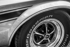 3 Encontro Brasileiro de Autos Antigos (Paulo Nesso) Tags: auto car wheel de tire classics carro goodrich bf pneu roda guas lindia fotography antigo classicos