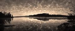Mackerel Sky (christopher.bligh) Tags: sky panorama lake reflection clouds sunrise mackerel cloudy