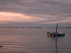 Ilha do Sol vista da Praia das Pedrinhas Natural Tati (Tati Bello) Tags: rj naturismo baiadeguanabara doraluz luzdelfuego doravivacqua naturaltati sereianua maedonaturismo naturaltatifotos