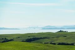 View towards the San Francisco skyline (harminder dhesi photography) Tags: sanfrancisco california green skyline canon landscape view zoom sonoma thecity hills bayarea petaluma sonomacounty norcal s3 70d vsco snapseed vscocam