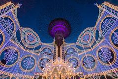 Christmas Wonderland @ Gardens by the Bay #3 (BoXed_FisH) Tags: christmas architecture zeiss marina lights singapore southeastasia sony illumination wideangle bluehour colourful sg celebrate lightings gardensbythebay sonyzeiss zeiss1635 sonya7 sel1635z sony1635mmvariotessartfef4zaoss sonyzeiss1635f4oss