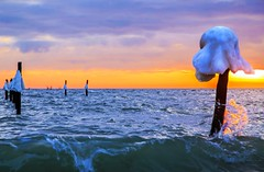 Dancing Queen (Threin Ottossen) Tags: winter sunset sea seascape ice beach water landscape denmark outdoor shore lolland weatherphotography abigfave fishingstakes maglehoej