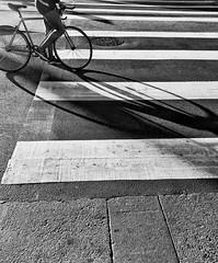 Crossing (O Caritas) Tags: sanfrancisco california bw bike bicycle mobile stripes wheels biker marketstreet crosswalk bikerider snapseed samsunggalaxysiii 2015090708005901