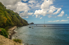 Dominica - Scott's Head and Champagne Reef (c)2015 Wayne Hsieh (Flickr)