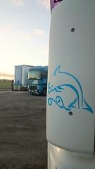 Golfinho (Transmarintir - Algetrans) Tags: portugal dolphin renault setbal 95 magnum 430 390 palmela daf golfinho xf algeruz algetrans transmarintir 9054se 2751zx translitm