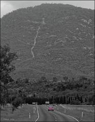 Purple Beetle at Mt. Tennent (i-lenticularis) Tags: car volkswagen landscape australia canberra vwbeetle selectivecolour volkswagenbeetle p645d p67200f4