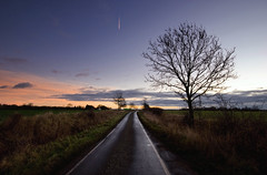 Country Road Sunrise (nigdawphotography) Tags: winter sunset sunrise season landscape bush seasons harlow essex threshers