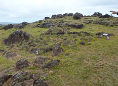 P1710711 Orongo, Easter Island, Chile (4) (archaeologist_d) Tags: chile easterisland archaeologicalsite orongo