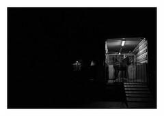 Black is beautiful (intasko) Tags: street city urban bw horse black film monochrome beautiful beauty animal de cheval nice noir mju olympus vision pas calais nord roubaix lgance pellicule