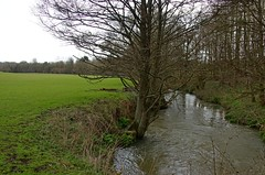 1217-20L (Lozarithm) Tags: landscape rivers 1770 studley calne k50 justpentax smcpda1770mmf4alifsdm pentaxzoom rivermarden