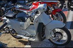MOTO GUZZI Galletto (baffalie) Tags: old classic bike sport vintage italian italia retro motorbike bologna moto italie ancienne fiera motocycle classicas