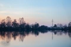 Reflections I (judithrouge) Tags: blue trees lake reflection water see evening abend wasser soft bank ufer bäume reflektion abendrot