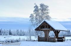 Alaska Park Pavilion in Winter - Fairbanks (ultimateplaces) Tags: road park morning trees winter snow cold college nature field alaska forest landscape solitude state farm pavilion birch dairy aspen spruce fairbanks creamers