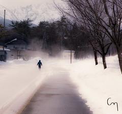 The Melt (Chill Mimi) Tags: winter mountains cold fog mimi alpine change stroll hakuba chill happoone lonelyroad
