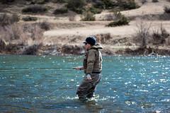 Cast then Step (john.c.arnold) Tags: winter fishing montana echo swing casting braden spey troutspey