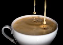 58/366 (phillipgaede) Tags: hot tasse 50mm cafe drink drop potd espresso 365 trinken tabletop highspeed arabica lecker getrnk coffeekaffee hotdrink 366 lattemacchiato tabletopphotography cafecrema projekt366 eos600d