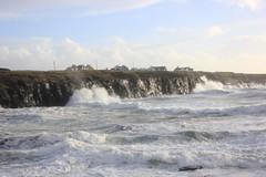 IMG_8360 (DaveGifford) Tags: ireland spanishpoint wildatlanticway