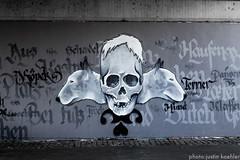 Frankfurt am Main (jkaehler01) Tags: streetart germany skulls skull wolf europe euro frankfurt frankfurtammain rivermain