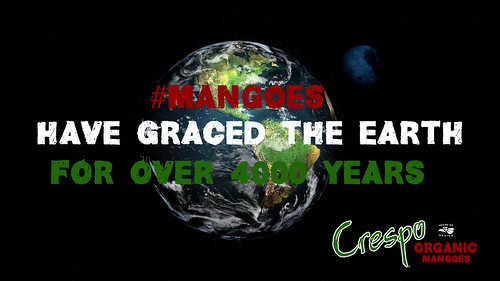 """Mangoes on Earth 4000 Years • <a style=""""font-size:0.8em;"""" href=""""http://www.flickr.com/photos/139081453@N03/25638616151/"""" target=""""_blank"""">View on Flickr</a>"""
